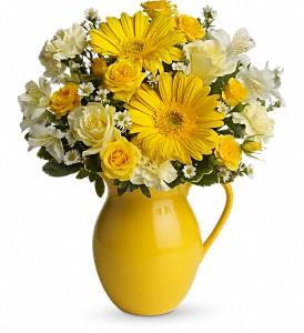 Teleflora's Sunny Day Pitcher of Cheer in The Woodlands TX, Rainforest Flowers