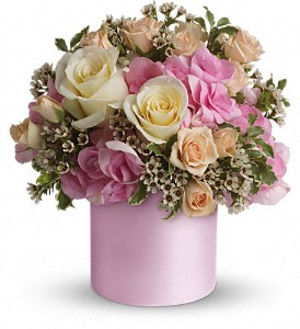 Teleflora's Blushing Beauty in Malverne NY, Malverne Floral Design