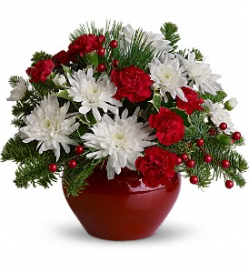 Christmas Treasure in Dubuque IA, New White Florist