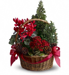 Tannenbaum Basket in North Syracuse NY, The Curious Rose Floral Designs