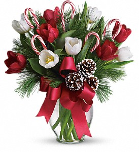 By Golly It's Jolly in Fort Walton Beach FL, Friendly Florist, Inc