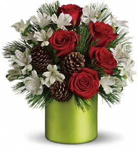 Teleflora's Christmas Cheer Bouquet in Houston TX, Fancy Flowers