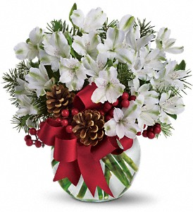 Let It Snow in Dubuque IA, New White Florist