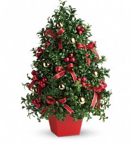 Deck the Halls Tree in Dubuque IA, New White Florist