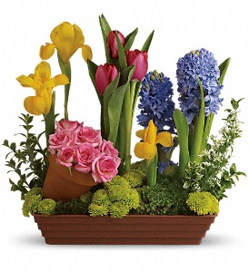 Spring Favorites in Columbus IN, Fisher's Flower Basket