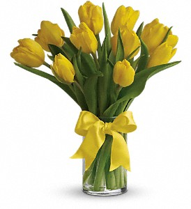 Sunny Yellow Tulips in Columbus IN, Fisher's Flower Basket
