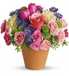 Spring Sonata in Sugar Land TX, First Colony Florist & Gifts