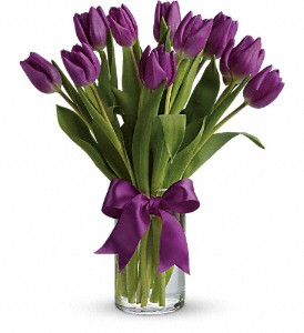 Passionate Purple Tulips in Austintown OH, Crystal Vase Florist