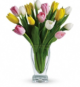 Teleflora's Tulip Treasure in Dubuque IA, New White Florist