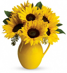 Teleflora's Sunny Day Pitcher of Sunflowers in Salem MA, Flowers by Darlene/North Shore Fruit Baskets