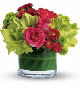 Teleflora's Beauty Secret in Moline IL, K'nees Florists