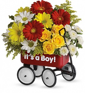 Baby's Wow Wagon by Teleflora - Boy in Bloomington IL, Forget Me Not Flowers