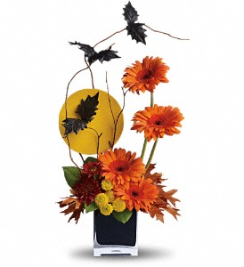 Teleflora's Boo-tiful Bats in New Iberia LA, Breaux's Flowers & Video Productions, Inc.