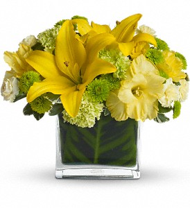 Oh Happy Day by Teleflora in Trumbull CT, P.J.'s Garden Exchange Flower & Gift Shoppe