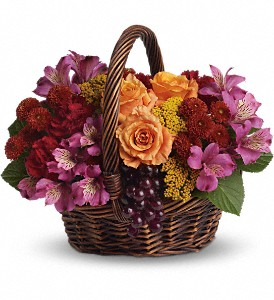 Sending Joy in Fredonia NY, Fresh & Fancy Flowers & Gifts