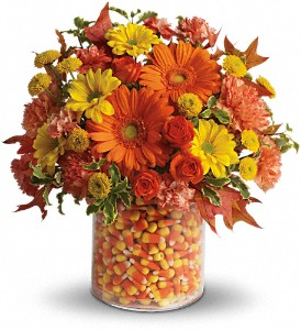 Teleflora's Candy Cornie in Zeeland MI, Don's Flowers & Gifts