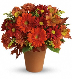 Golden Glow in Sparks NV, Flower Bucket Florist