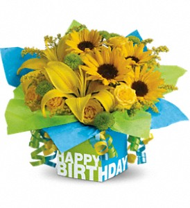 Teleflora's Sunny Birthday Present in Oklahoma City OK, Array of Flowers & Gifts