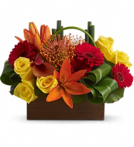 Teleflora's Bamboo Getaway in Dripping Springs TX, Flowers & Gifts by Dan Tay's, Inc.