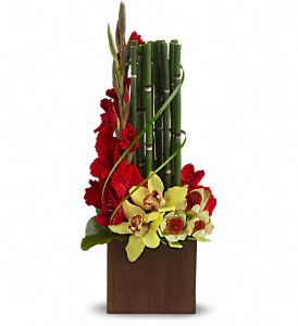 Teleflora's Fantasy Found in Dripping Springs TX, Flowers & Gifts by Dan Tay's, Inc.