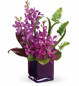 Teleflora's Island Princess in Sunnyvale TX, The Wild Orchid Floral Design & Gifts