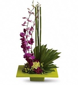Zen Artistry in Bellevue WA, Lawrence The Florist