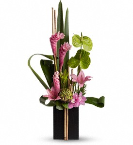 Now and Zen in New York NY, Fellan Florists Floral Galleria