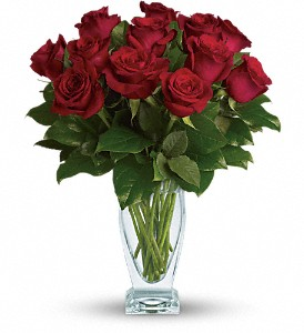 Teleflora's Rose Classique - Dozen Red Roses in Lewiston ME, Val's Flower Boutique, Inc.