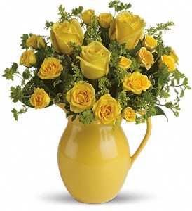Teleflora's Sunny Day Pitcher of Roses in Hendersonville NC, Forget-Me-Not Florist