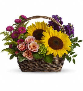 Picnic in the Park in Cocoa FL, A Basket Of Love Florist