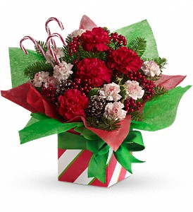 Teleflora's Christmas Present Perfect in Fort Lauderdale FL, Brigitte's Flowers Galore
