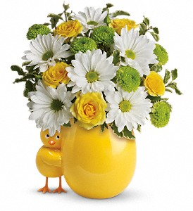 My Little Chickadee by Teleflora in Spring TX, A Yellow Rose Floral Boutique