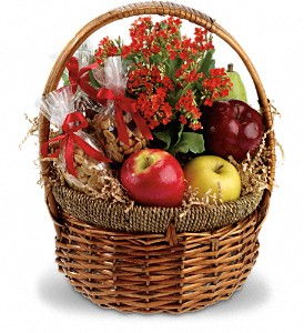 Health Nut Basket in Mount Morris MI, June's Floral Company & Fruit Bouquets