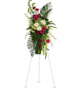 Gerberas and Palms Spray in Benton Harbor MI, Crystal Springs Florist