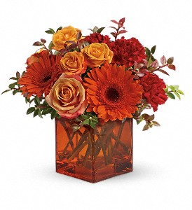 Teleflora's Sunrise Sunset in McHenry IL, Locker's Flowers, Greenhouse & Gifts
