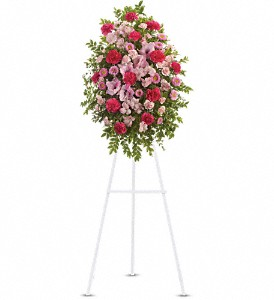 Pink Tribute Spray in Flushing NY, Four Seasons Florists