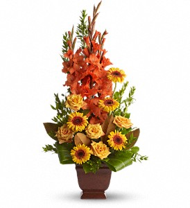 Teleflora's Sentimental Dreams in Big Rapids, Cadillac, Reed City and Canadian Lakes MI, Patterson's Flowers, Inc.