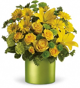 Teleflora's Say It With Sunshine in Laurel MD, Rainbow Florist & Delectables, Inc.