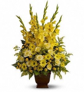 Teleflora's Sunny Memories in Back Bay MA, Fresco Flowers