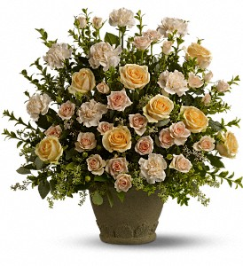 Teleflora's Rose Remembrance in Hilton NY, Justice Flower Shop
