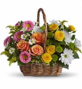 Sweet Tranquility Basket in Herndon VA, Bundle of Roses