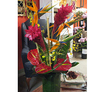 Exotica in Massapequa Park NY, Bayview Florist & Montage  1-800-800-7304