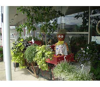 Our Outdoor Gardener in Hanover PA, Country Manor Florist