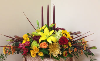 Thanksgiving Trio in Naples FL, Gene's 5th Ave Florist