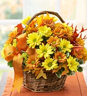 Fall Daisey Basket10 in Hollister CA, Precious Petals