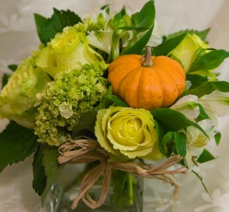 Pumpkin Patch in Farmington CT, Haworth's Flowers & Gifts, LLC.