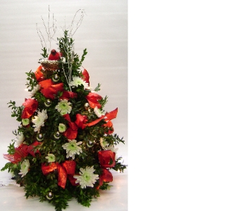 BOXWOOD TREE in Herndon VA, Herndon Florist, Inc