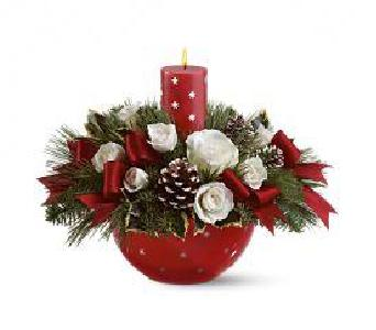 Teleflora's Holiday Star Bowl  in Woodbridge VA, Brandon's Flowers