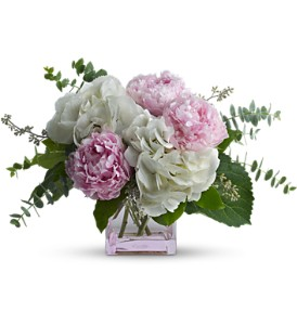 Teleflora's Pretty in Peony in Thornhill ON, Orchid Florist