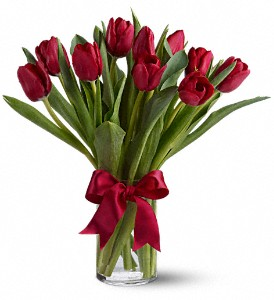 Radiantly Red Tulips in Austintown OH, Crystal Vase Florist